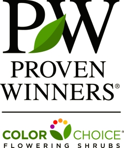 Proven Winner Shrubs