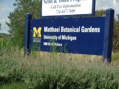 matthaei-botanical-gardens
